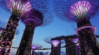 Singapore as the World Class International Arbitration Centre
